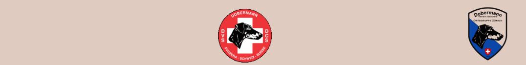 Dobermann-von-Arkewit.ch